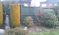 Painting fence and staining fences, forest row