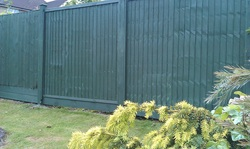 Fence painting Hartfield East Sussex